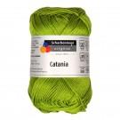 Catania 00205